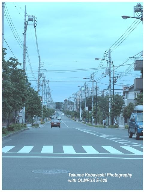 P7200780-e-s_R.jpg