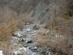 道沿いに流れる塩川