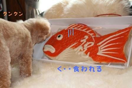 10-1-2_20091001010213.jpg