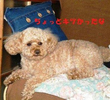 5-10-1_20090510225344.jpg