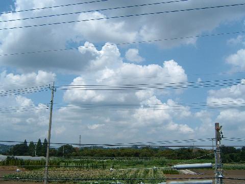 2006_0815_122548AA0001.jpg