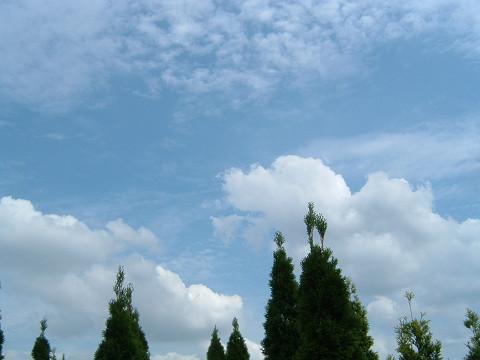 s2006_0916_124440AA.jpg