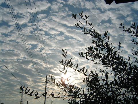 s2006_0921_064414AA.jpg