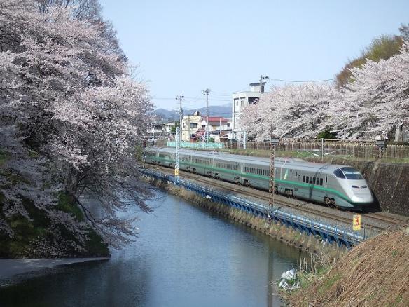yamagata 069