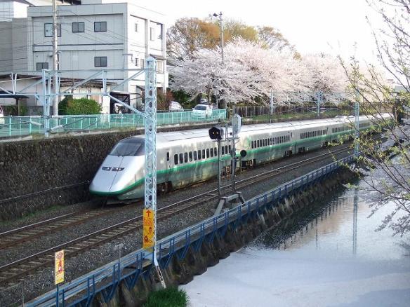 yamagata 072