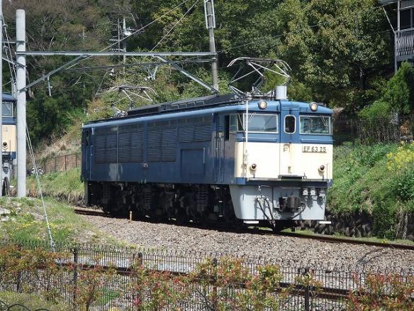 yamagata 142