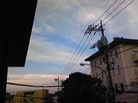 SH350042.jpg