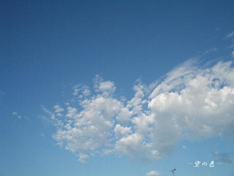 綺麗な青空に不思議な形の雲。