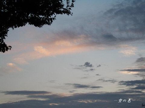 優しいピンクに染まる雲。