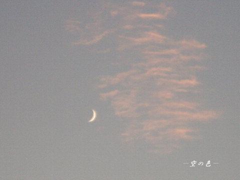 夕方のお月様2