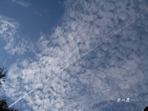 雲の中を、飛行機雲が走る。