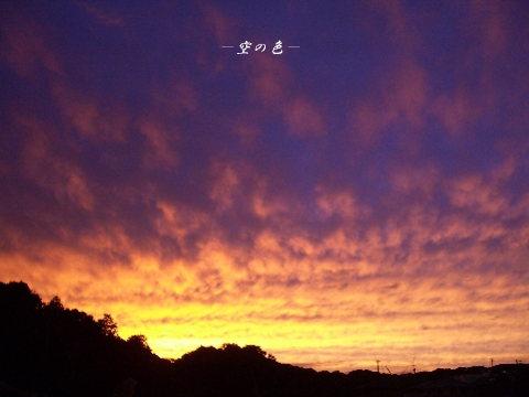 燃えるような夕空。