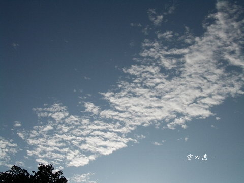 整列しているような朝の雲達。