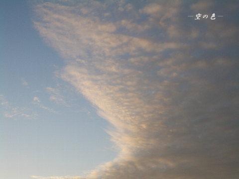 ピンクの雲、朝焼け。