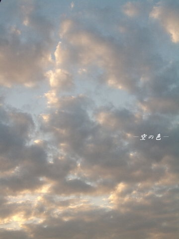 朝の雲はピンクに輝く。
