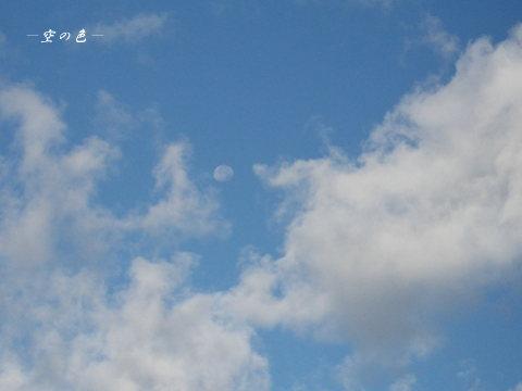 居待月と雲。