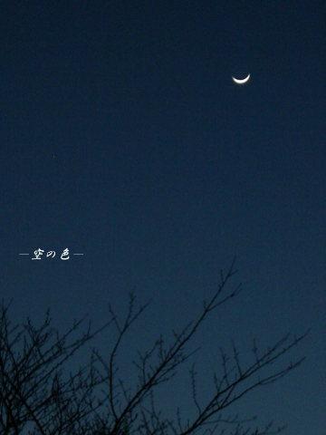姿を見せたお月様。