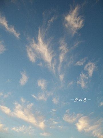 雲が踊る。