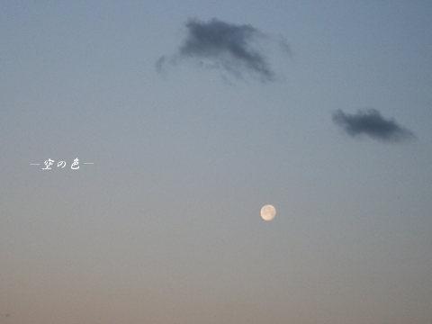 朝、まだ輝くお月様も見つけると、「やった!」と思う。^^