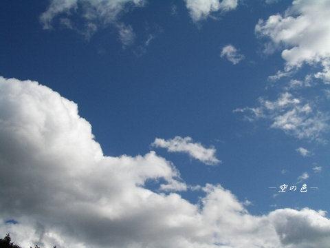 大きな雲に見惚れる。