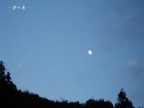 輝いているお月様をこんなに綺麗に撮れるのは珍しい!