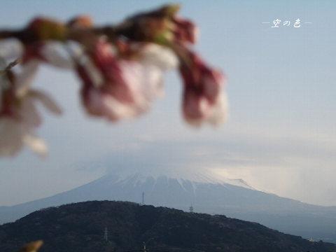 富士山はいつ見ても綺麗。
