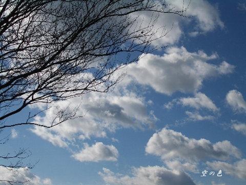 寒い日の空は空気が澄んで空の色が綺麗。