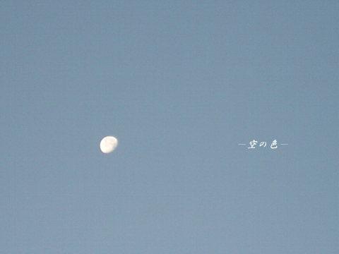 朝、お月様を探すのが日課。