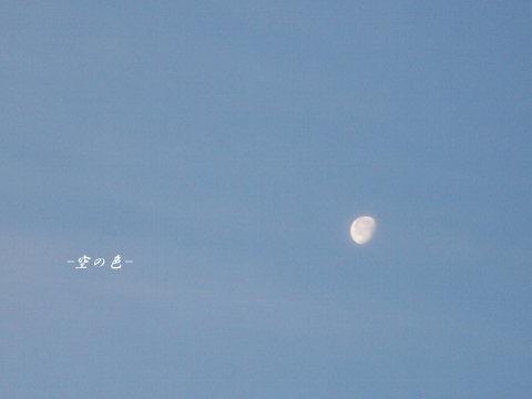 月の写真は何枚も撮ったけれど、この写真は一番好き♪