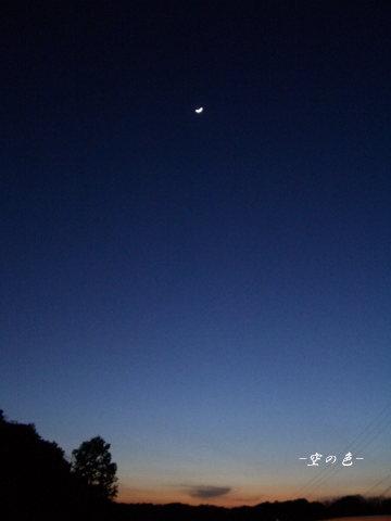 夜の始まり。