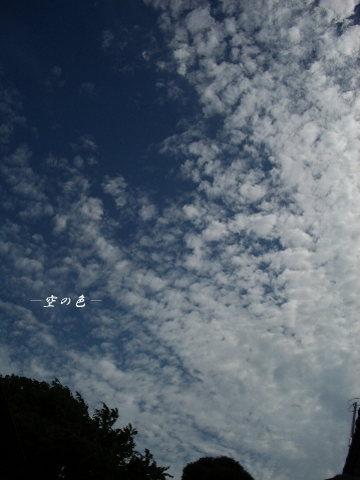 空が高い!