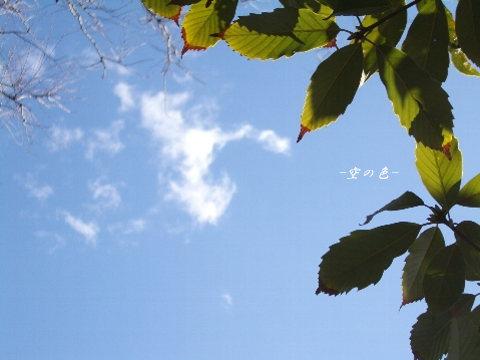 ある冬の日の昼間の空。
