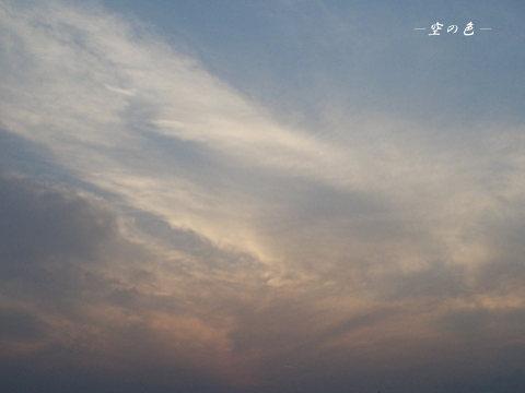 夕陽は雲に隠れちゃった。