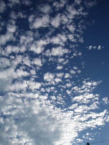 空を遊ぶ雲達。