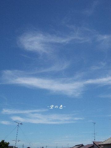雨上がりのような空だと思ったら、台風の前の空でした^^;