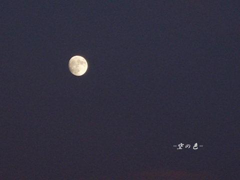 輝くお月様が撮れた!