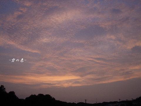 久しぶりの夕空。