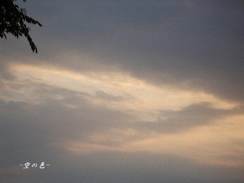 曇の日の空は、意外な夕空を見せてくれる。
