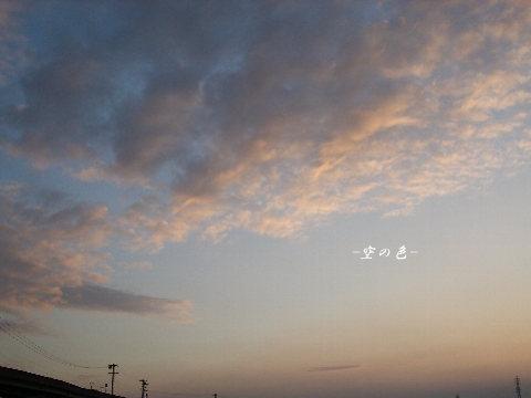 澄んだ夕空。