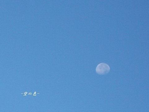 夜見た綺麗なお月様を、朝再び見る。