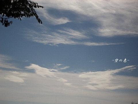 風に乗る雲。