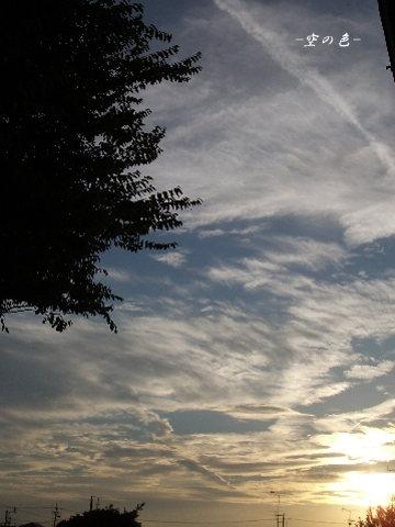 雲が晴れて見えた夕焼け。