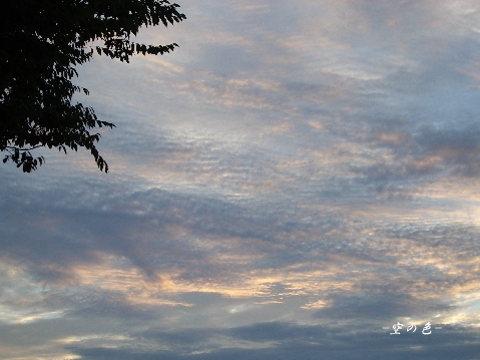 久しぶりの見たラベンダー色の夕空。