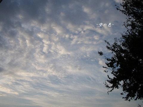 朝一番に見る空は、綺麗であって欲しい。