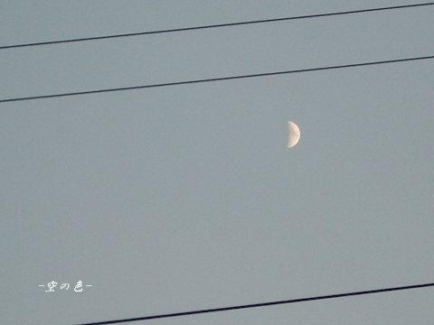 月を撮るのも難しい時期になってきました。