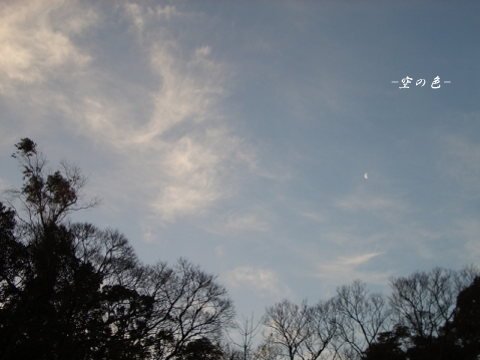 月と雲と木のシルエット
