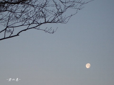 このくらいのお月様って好き♪