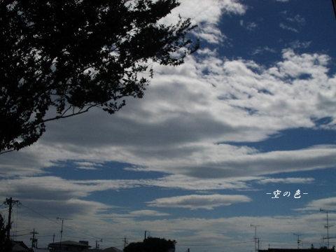 綺麗な青空!