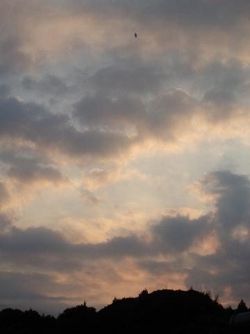 夕陽を見て一息