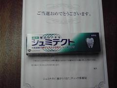P1000135.jpg